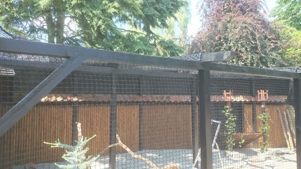 Aviary nets by Van Dijk for the safety of your birds